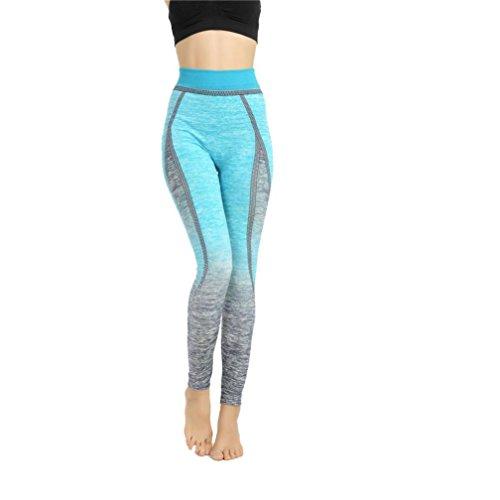 Longra Femmes Yoga Sports Aptitude élasticité pantalons (Bleu, Gratuit Taille)