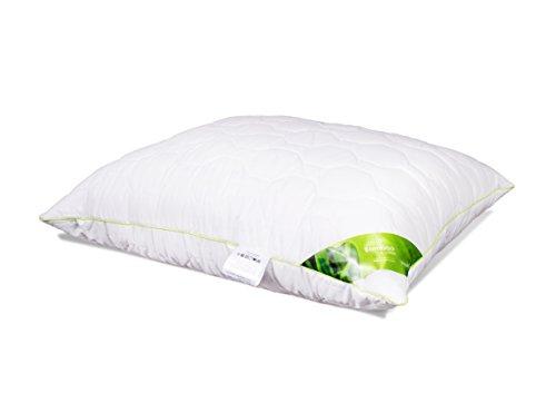 Kopfkissen Schlafkissen Baumwolle Bambus Steppkissen mit Reißverschluss Kissen weiß für Allergiker atmungsaktiv waschbar 60 Grad 40x40 40x60 50x60 50x70 70x80 Premium Qualität Öko-Tex Standard (40 x 60 cm)