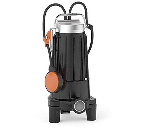 PEDROLLO Pompe électrique Tritus TR 2.2 V400