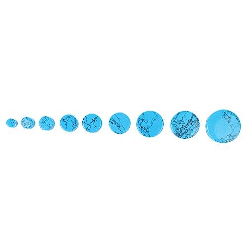 2pcs Expanseurs de l'Oreille en Pierre Piercing Ecarteur Plug Rond Boucle d'Oreille Bijoux de Corps Chic (Bleu Turquoise) 12mm