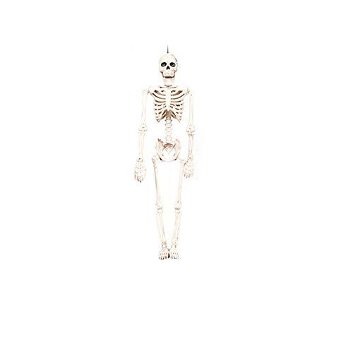 Ndier Halloween-Skelett oder Ganzkörper-Halloween-Skelett für Halloween-Dekoration -