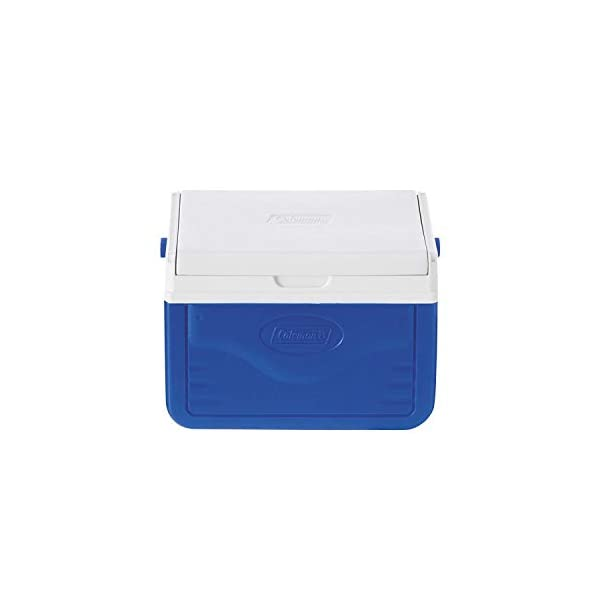 Coleman Performance 6 Personal Cooler, 4 Litre, Small Cool Box for Food and Drinks, Robust Ice Box Suitable for 6 Small Cans, Robust and Sturdy, Stays up to 9 Hours Cool, Lightweight Cooler 1