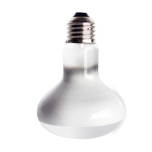 camellia 220 V UVA + UVB Reptil Lampe Schildkröte Aalen UV Glühbirnen Heizung Lampe Amphibien Echsen Temperaturregler (Weiß) Amphibien-warmes Weiß Led