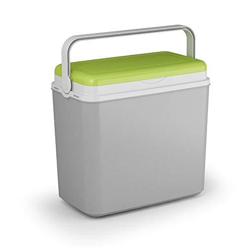 Adriatic, grande borsa frigo da 24 litri, per campeggio, spiaggia, picnic, con 2 confezioni di ghiaccio, verde e grigio