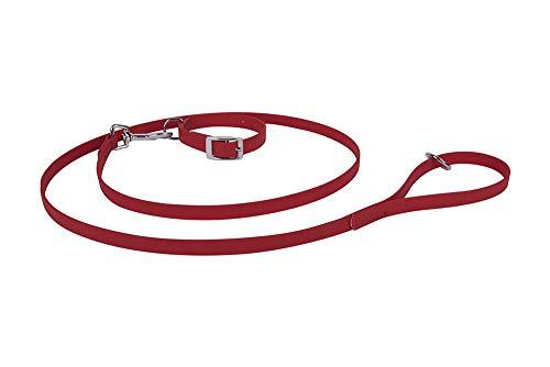 Francisco Romero 8436586342463 Pack Kette Beta und Band, 1.6 x 60 cm, Rot