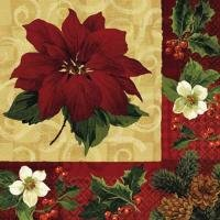 amscan Holiday Botanical Servietten Christmas Star Servietten