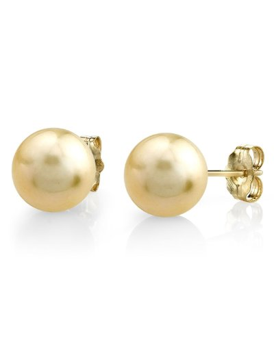 13-14mm Golden South Sea Cultured Pearl Stud Earrings in 14K Gold - AAAA Quality