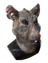 Le caoutchouc plantation TM 619219293303Égouts Rat Masque Gnarly Ninja accessoire de costume pour rongeurs 90par Coopers Déguisement, adulte, taille unique