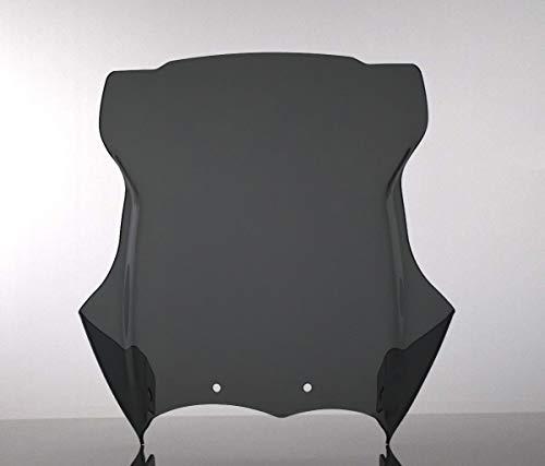 R 1200 GS 2004-2012 Windshield Windscreen Cúpula parabrisas r1200gs ahumado oscuro