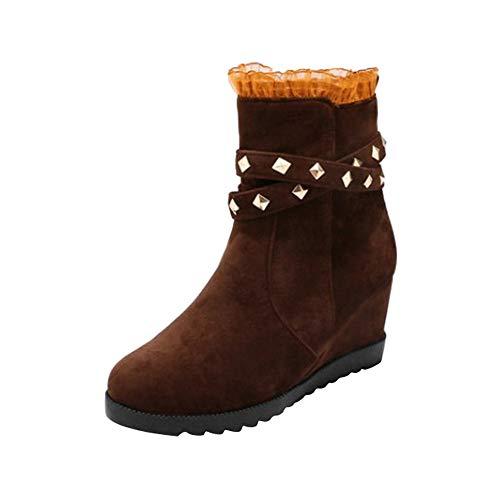 ❤️ Bota de Mujer Classic Suela Gruesa, Zapatos de Moda cuña Heel Increase Female Lace Side Pull Cremallera Absolute
