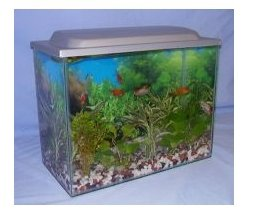 Aquastart aquarium starter kit 25ltr