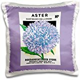 BLN Vintage Seed Packet Reproductions - Aster Giant Branching Lavender Roudabushs Seed Store - 16x16 inch Pillow Case
