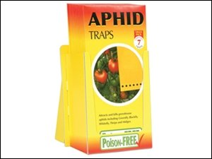 stv-aphid-trap-7-pack