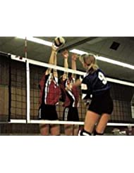 Volleyball-Turniernetz DVV I