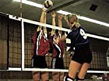 Volleyball-Turniernetz DVV I