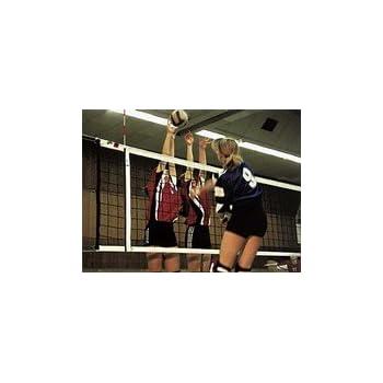 DVV I Red para voleibol