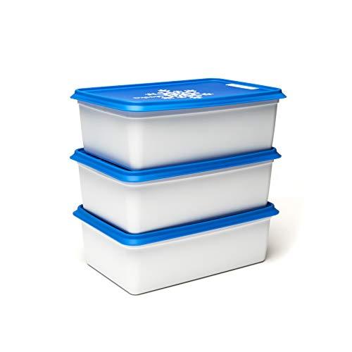 Amuse Alaska Gefrierdosen / Tiefkühldosen-Set, eckig, in Profi-Qualität, 3 x 2000 ml, BPA-frei, hergestellt in der EU