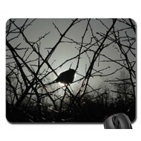 red-robin-in-sun-mouse-pad-mousepad-birds-mouse-pad