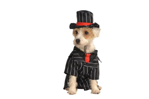 Rubies Costume Halloween Classics Collection Pet - Halloween-kostüme Gangster Für Hunde