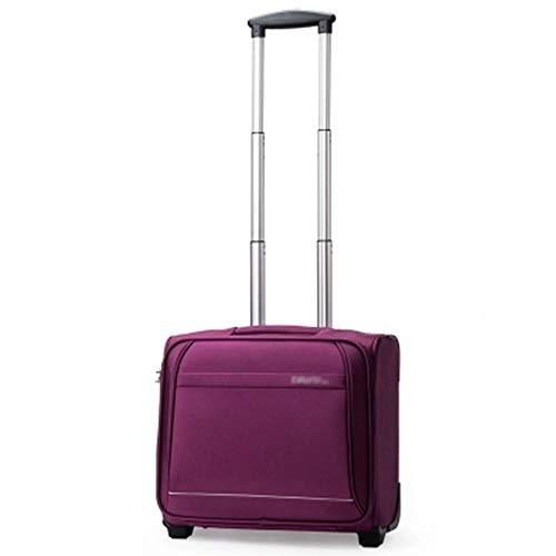 Rky tronco trolley caso-16 pollici cross section impermeabile bagaglio affari d'imbarco valigia trolley da viaggio 4 colori opzionale /-/ (colore : purple)