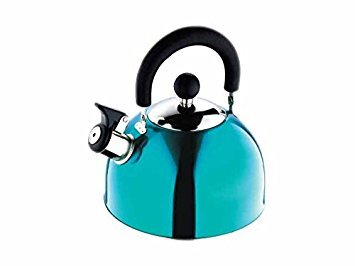 Renberg Induction Base Stainless Steel Whistling Kettle (2.25 Litres, Multicolour)