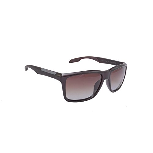 4ac0600679dd X ford 9614752365655 Rectangle Sunglasses Brown Xf567- Price in India