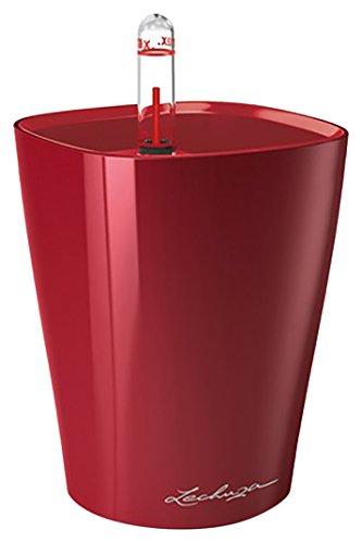 Lechuza 14960 Mini Deltini Table planters, Scarlet Red Glossy, 10x10x13 cm