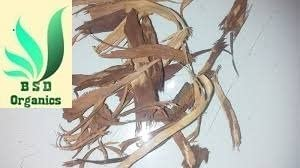 BSD Organics Natural Peepal Bark/Arasam Pattai/sacred fig for Decoction, Oral care, skin care and more -25 grams