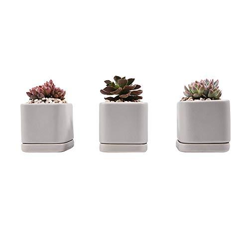 Sungmor Pots succulents en céramique émaillée | 3PC PACK Gris Mini Planteur | Pot de fleurs moderne avec drainage | Contenant Des Plantes De Cactus | Titulaire plante d'intérieur