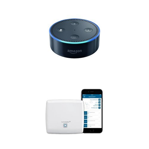 Amazon Echo Dot (2. Gen.) Intelligenter Lautsprecher mit Alexa, Schwarz + Hama Batteriestation (geeignet für Amazon Echo Dot (2nd Gen.), 6000 mAh Ladestation, tragbar)