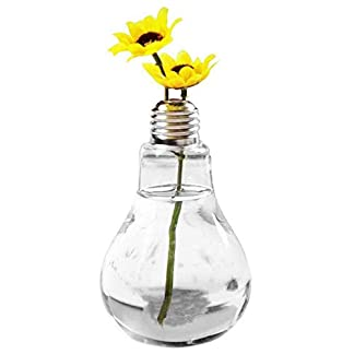 Ruikey Bombilla de Bolas de Cristal de Mesa en Forma de Flor de Jarrón Florero Cristal Colgante Florero Bulbo Jarrones de Cristal Transparente