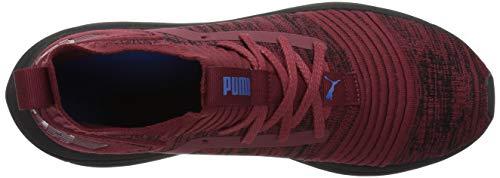 PUMA Men s Ignite Limitless SR Evoknit Sneaker  Pomegranate-Strong Blue  12 M US