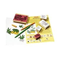 Stamp Set Lifecycle Frog 5/Pk by CEInc