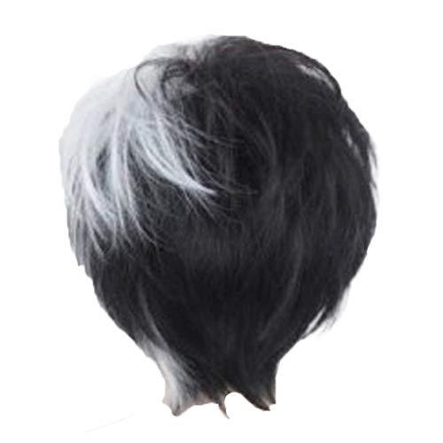 (Herren Perücke ZYUEER Wigs Perücken Anime Cos Kurze Haare Schwarz Und Weiß Mischfarbe GefäLschte Haare Flauschige Realistische Kurze Gerade Haar 15 Cm)
