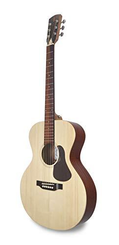 APC Instruments EA100 Akustische Gitarre