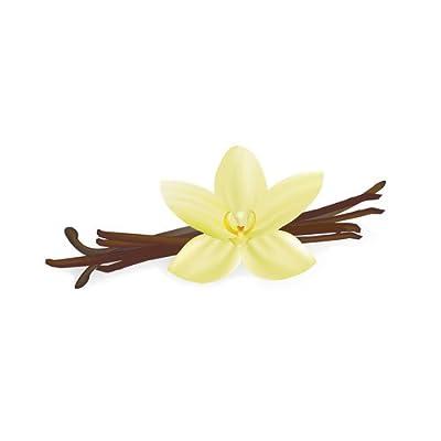 SYSTEM SMOKE Vanilla Aroma Konzentrat DIY 10ml von SYSTEM SMOKE