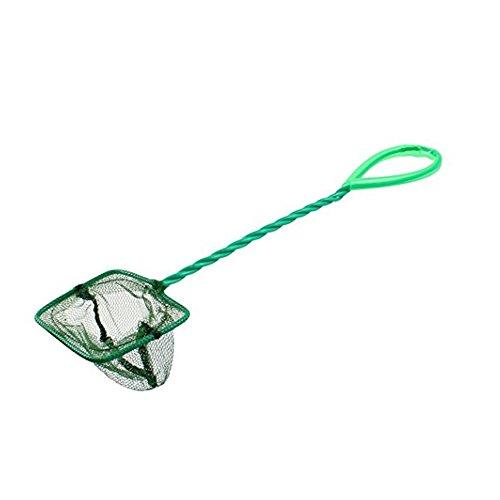 DDG EDMMS Fischfangnetz, rechteckig, grün