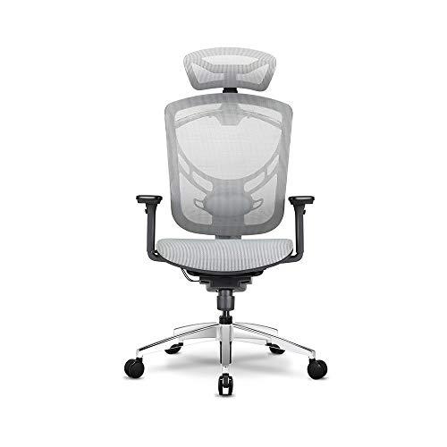 Executive Computer Büro Stuhl (Duriano Atmungsaktiv höhenverstellbar büro Stil bürostuhl 360 Grad drehbar ergonomische mesh Stuhl Executive konferenzsitz for büro tagungsraum Computer Stuhl Schlafzimmer Sitz Lobby Sitz)