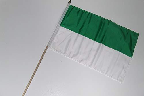 generisch Schützen Schützenfest grün weiß Fahne/Flagge 30x45 cm mit Holzstab