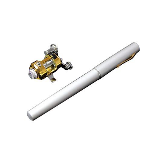 Heheja Mini Angelrute Angelrolle Kit Set Tragbares Design Stift Angelrute mit Angelrolle und Fischköder (Silber)