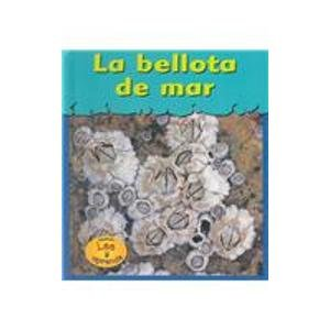 La Bellota de Mar = Barnacles (HEINEMANN LEE Y APRENDE/HEINEMANN READ AND LEARN (SPANISH)) por Lola M. Schaefer