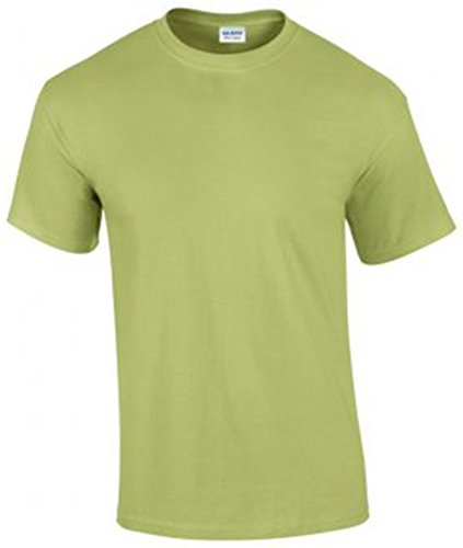 Gildan Herren Ultra Cotton T-Shirt Kurzärmlig Grün - Pistachio