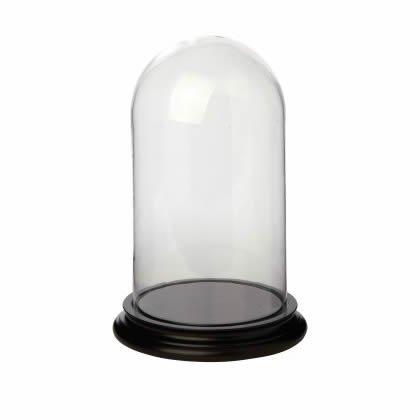Campana di vetro misura 11,5x20