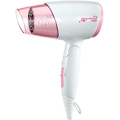 Secador de pelo para niñas, modelo Home Barber Shop no daña a los estudiantes de Dormitorio, iones negativos silenciosos de baja potencia