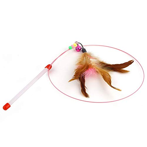 Cell Phone Flash - Wire Chaser Wand Teaser Feather Kitten Cat Pet Play Fun Toy With Bell Beads - Camera Memorial Telescoping Shell Toothpaste Items Exterior Removal Large Costume Tree Name H Cell Wand