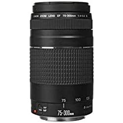 Canon EF 75-300mm / 4.0-5.6 / III Lens Téléobjectif