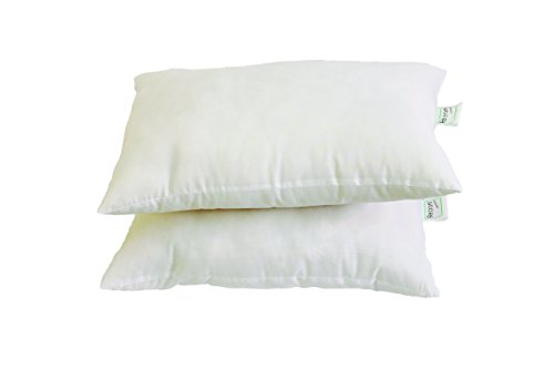Recron Swiss Cotton Dream Pillow - 40 x 60 cm,...