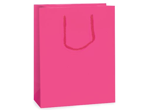 Hot Pink Matte Gift Bags Cubmini-Pk 8X4X10 inch 10 pack