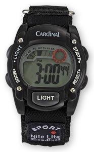 Cardinal montre