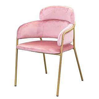 FU_BIN Barhocker Esszimmerstuhl Lounge Chair mit Armlehnenstuhl für Western Restaurant Cafe Bar (Farbe : Rosa)